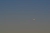 Crescent Moon and Comet PanSTARRS
