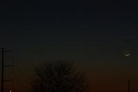Horizon, Moon, and Comet #2