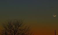 PanSTARRS and Crescent Moon #1